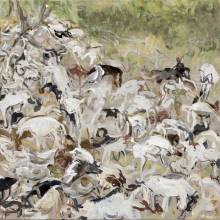 Sea of Goats
